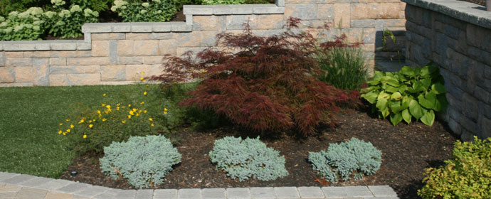 How Much Does Custom Landscaping Usually Cost Long Island